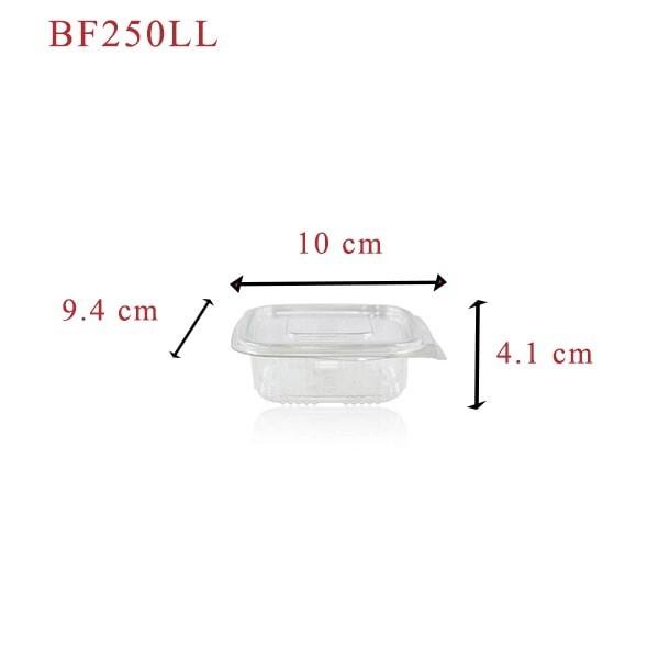 zoom Barquette Plastique Fraicheur