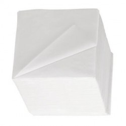 Serviettes 2 Plis 24x24 Blanches
